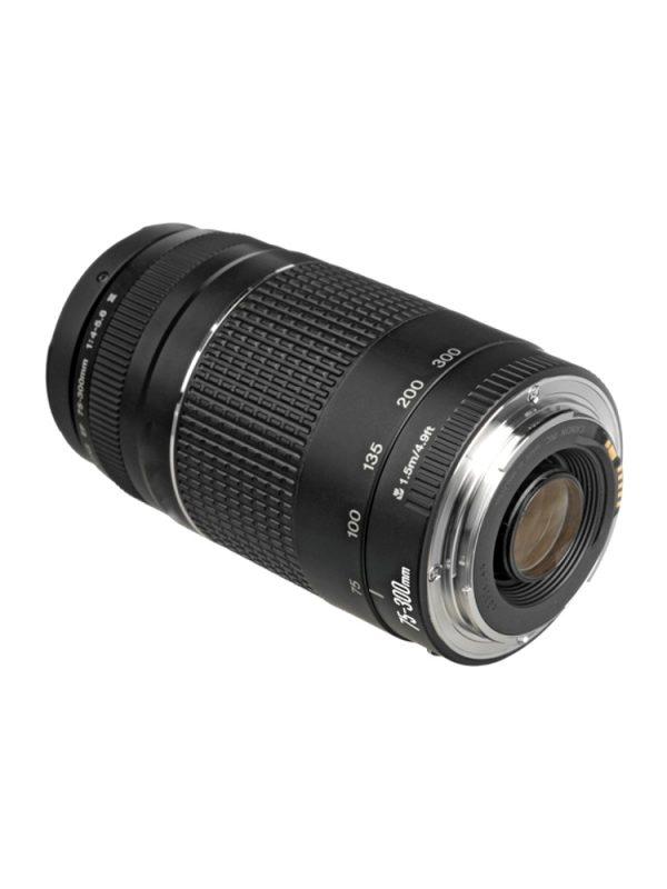 Canon75-300-5 (1)